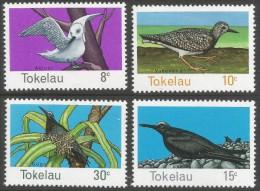 Tokelau Islands. 1977 Birds of Tokelau. MNH Complete Set. SG 57-60
