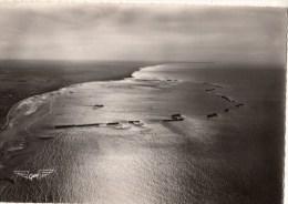 C P S M-C P M--14---ARROMANCHES---crépuscule Sur Le Port Winston----voir 2 Scans - Arromanches