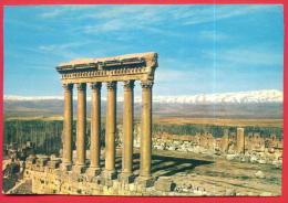 164024 / Baalbek -  Les six colonnes du temple de Jupiter - Liban Libanon Lebanon