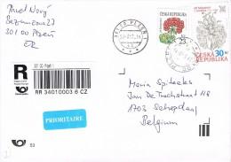 Czech Republic 2013 Postal Cover Plzen - Schepdaal (Belgium) Flower 500th Birth Anniversary Jiri Melantrich - Tsjechië
