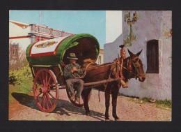 DONKEK CART ANE CHARRIOT ALBUFEIRA  1970 YEARS POSTCARD ALGARVE PORTUGAL FARO DIST. - Faro