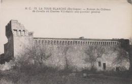 LA TOUR BLANCHE     RUINES DU CHATEAU DE JOVELLE - France