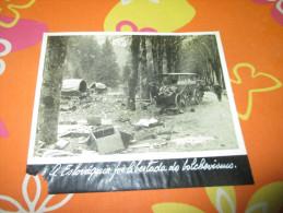 Photo Press German Slovakia Horse Wagon Guerre WWII - Documents