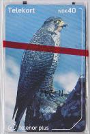 Télécarte à Puce NEUVE NSB NORVEGE - OISEAU Rapace - FAUCON - HAWK Raptor BIRD NORWAY MINT IN BLISTER Phonecard - 3865 - Norvège