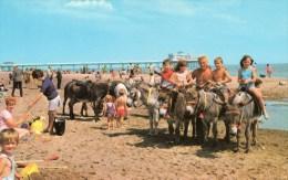 Postcard - Skegness Pier & Donkeys, Lincolnshire. SKE31 - Otros