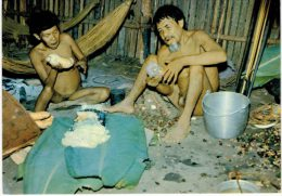 BTEPYS Venezuela Amazonie  Indios Xama-Tari Voir Texte Scan 2 - América
