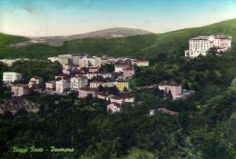 Fiuggi Fonte - Frosinone - Panorama - Formato Grande Viaggiata - Frosinone
