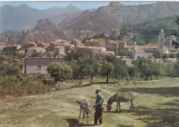 20 Corse île De Beauté  Piana Vue Générale Du Village - France