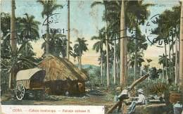 Réf : A-15-2861 :   CUBA  CUBAN LANSCAPE PAISAJE - Cuba
