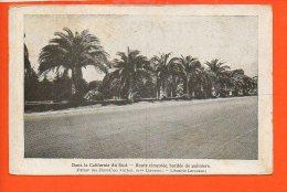 Dans La CALIFORNIE Du Sud - Route Cimentée, Bordée De Palmiers (publicité De La Librairie Larousse Paris 6ème Rue Mont) - Etats-Unis