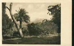 Der Kibogipfel Kibo Des Kilimandjaro Vom Mamba Aus Gesehen Tansania 14.5.1942 - Tansania
