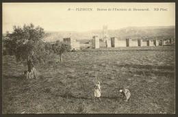 TLEMCEN Ruines De L'Enceinte De Mansourah (ND Phot) ALGERIE - Tlemcen