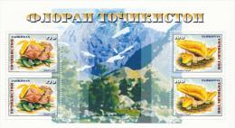 Tayikistan Hb 22 - Tayikistán