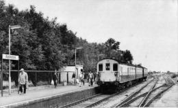 Appledore Railway Station Kent Class 206 Demu - Railway