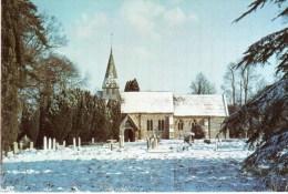 Postcard - Woodmancote St. Peter's Church, Sussex. A - Otros