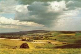 Postcard - South Downs Near Steyning, Sussex. A - Otros