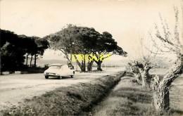 Cpsm 83 Gassin, Les 3 Pins, Camp De Vacances, Superbe DS Citroën, Carte Pas Courante Affranchie 1959 - France