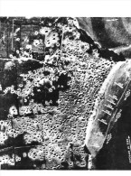GRANDCAMP-les-BAINS - Effets De Bombardements Au Matin Du 6 JUIN 1944 - Voir Suit Légende Au Dos - CPSM GF - Autres Communes