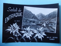 Saluti Da Entraque - Valle Gesso Cuneo - Cuneo