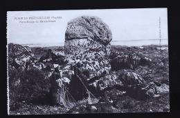 BRETIGNOLLES PECHEUSES - Bretignolles Sur Mer