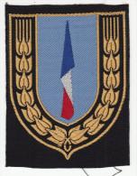"""Insigne Général Des Chantiers De La Jeunesse Française - Dit """" Bleu """" - Scudetti In Tela"""
