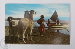 Postcard Bolivia - Lago/ Lake Titicaca - Bolivia