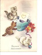 Trois Beaux Chatons Avec Machine à écrire - Gatos