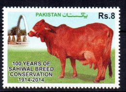 PAKISTAN - VACHES - COWS - FERME - FARMING - 100 YEARS OF SAHIWAL BREED CONSERVATION - 2014 - - Pakistan