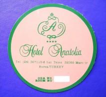 HOTEL  OTELI OTEL ANATOLIA BURSA ISTANBUL TURKEY TURKIYE TURQUIE DECAL STICKER LUGGAGE LABEL ETIQUETTE AUFKLEBER - Hotel Labels