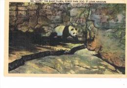 "U.S.A ST LOUIS MISSOURI   - See ""Happy"" The Giant PANDA ,Forest Park Zoo St- Louis -PAYPAL FREE - St Louis – Missouri"