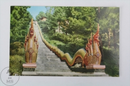 Thailand Postcard - Snake Stairs Leading To A Temple In Chiengmai - Tailandia