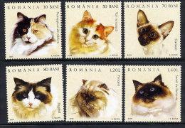 ROMANIA 2006 Cats Set Of 6 MNH / **.  Michel 6022-27 - 1948-.... Republics