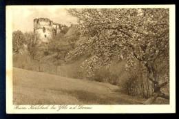 Ruine Karlsbach Bei Ybbs A.d. Donau / Postcard Circulated - Österreich