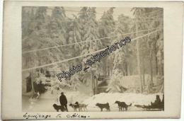 CPA Carte Photo Guerre 14-18 Militaire Chien Traineau Dog WW1 VOSGES Alsace - Guerre 1914-18