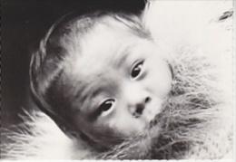 Canada Northwest Territories Eskimo Baby At His Mother's Back Postcard Unused (20008I) - Northwest Territories
