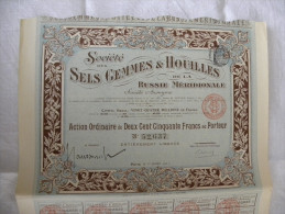 Titre 1911 Société Des SELS GEMMES & HOUILLES De La Russie Méridionale Action De 250 Francs 35 Coupons - - Russie