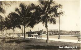 LA  HAVANE    CPA  PHOTO  LE  PHARE  LE  PORT - Cuba
