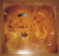 Disque 050 Vinyle 33 T Andreas Vollenweider - New Age
