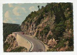 FRANCE - AK 223558 Les Hautes Vosges - Route Du Col De La Schlucht (Alt. 1159 M.) - Alsace