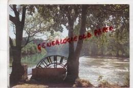 84 - L' ISLE SUR SORGUE - LE PARTAGE DES EAUX - ROUE A AUBES - L'Isle Sur Sorgue