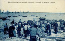 N°4559A -cpa Grandcamp Les Bains -arrivée Et Vente Du Poisson- - Frankrijk
