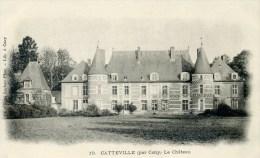 CATTEVILLE Par CANY Le Château (C3189) - Cany Barville