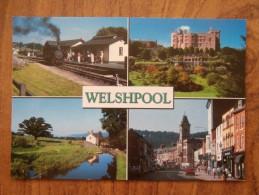 41809 PC: WALES: MONTGOMERYSHIRE: Welshpool. - Montgomeryshire