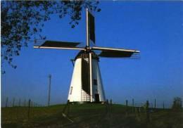 NUKERKE Bij Maarkedal (O.Vl.) - Molen/moulin - Prentkaart Van Molen Ter Hengst  (opgezeild) - Maarkedal