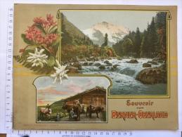 Livre  SUISSE - Souvenir Vom BERNER OBERLAND - 20 Pages - Vues, Photos - édition Photoglox Zürich - Livres, BD, Revues