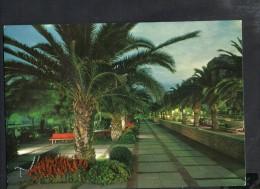 P555 Pietra Ligure ( Savona) - Passeggiata In Notturno, Nocturne Nuit, Night - RIVIER VISIOR P. 56 MARZARI - Italia