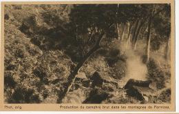 Production De Camphre Brut Dans Les Montagnes De Formosa Camphogene Ingelheim Boehringer Sohn Hamburg - Taiwan