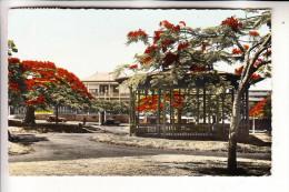 NOUVELLE CALEDONIE / NEU KALEDONIEN - NOUMEA, Kiosque A Musique, Place De Cocotiers - Neukaledonien