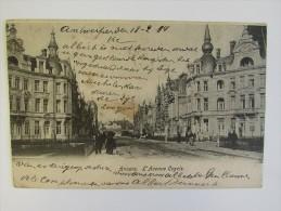 Cp/pk Anvers L'Avenue Cogels Antwerpen 1904 - Antwerpen