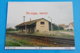 1 Photo - Gare De SAULCY Halle - Treinen